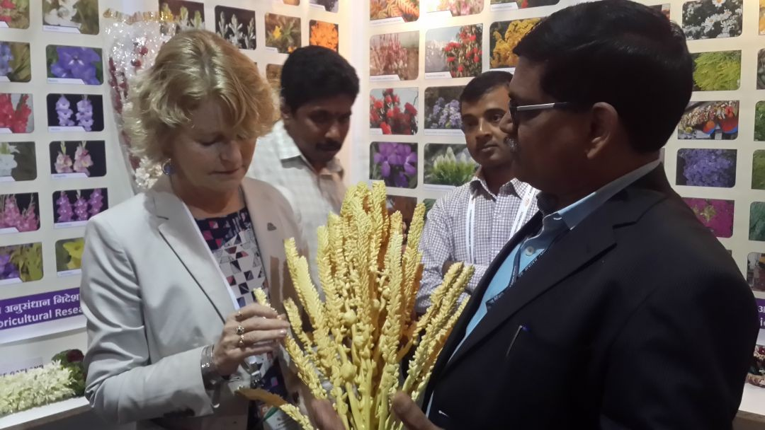 Ms. M. Ann Tutwiler Director General Bio Diversity visited ICAR-DFR stall and was presented coconut floral inflorescence